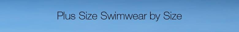 Shop Plus Size Swimwear by Size